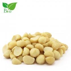 Φυστίκι Macadamia Βιολογικό