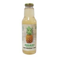 Συμπυκνωμένος Χυμός Ανανά - Pineapple 750ml (Οσμωτικός) Χ/Ζ